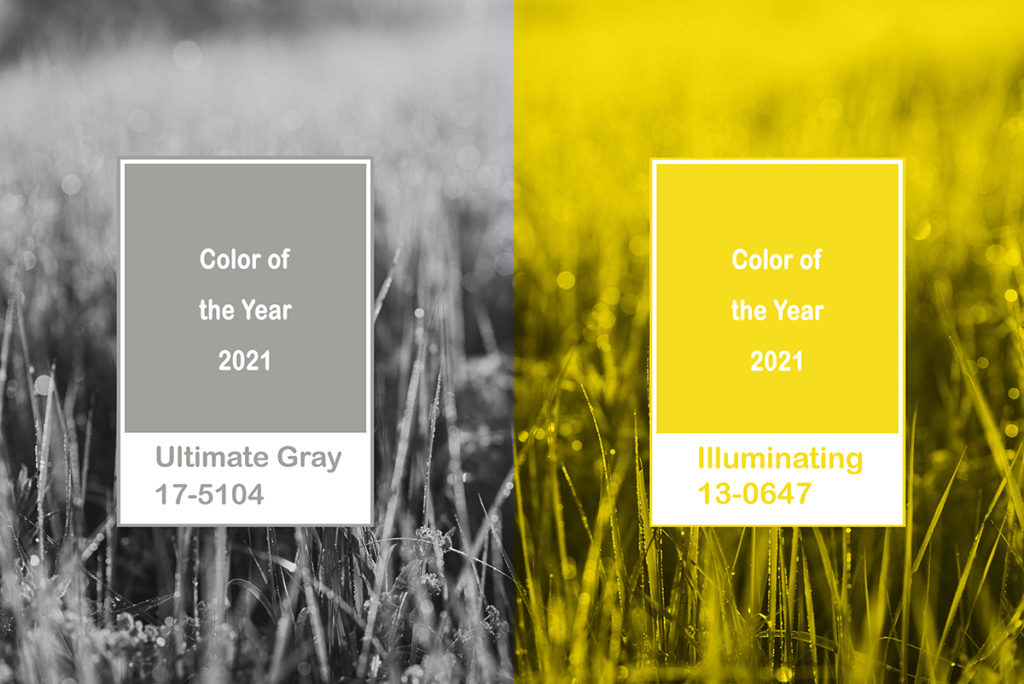 Collage New Pantone Illuminating, Ultimate gray color of the year 2021